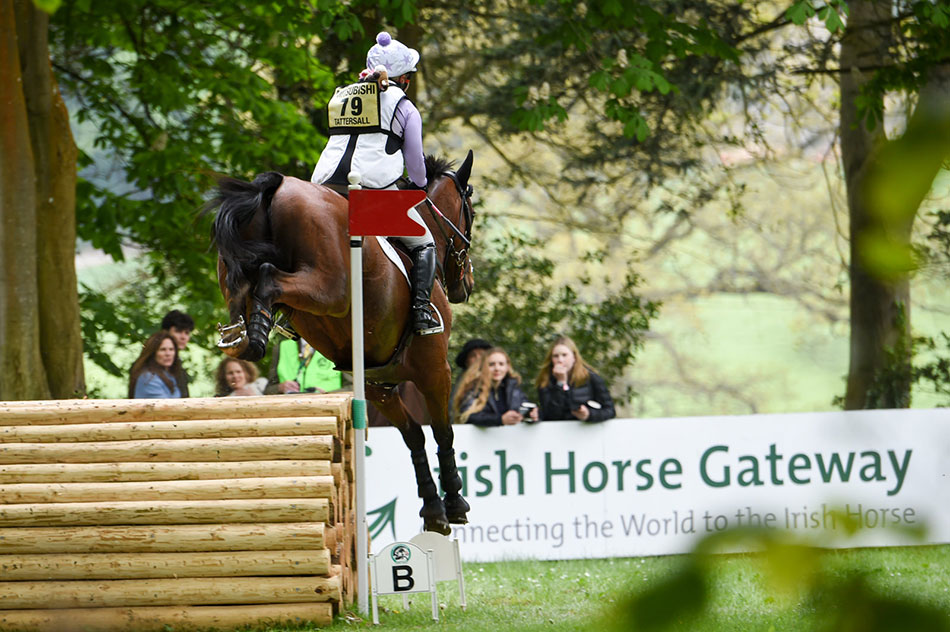 Rider jumping in Hunters Close at Badminton Horse Trials